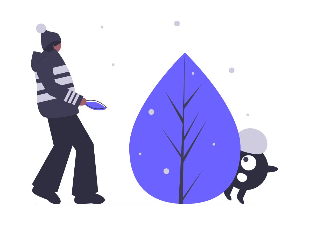 undraw_winter_magic_5xu2