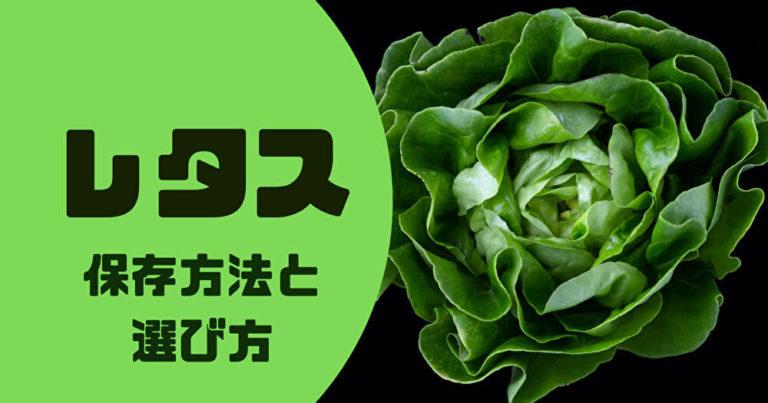 lettuce-save-fresh